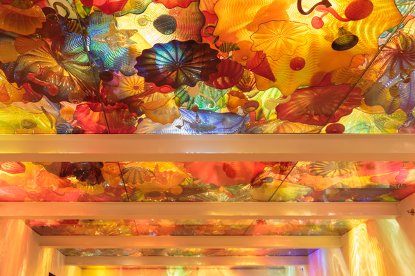 Dale Chihuly glass exhibit at the ROM © Allyson Scott
