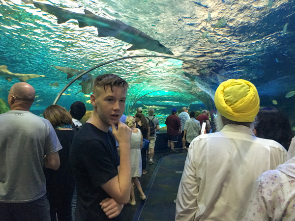 Jaymee at Ripley's Aquarium © Allyson Scott